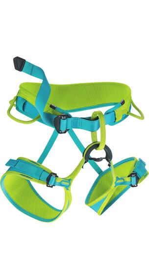 Edelrid Jayne klimgordel Dames XS groen/blauw